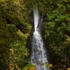 Shepperd's Dell Falls